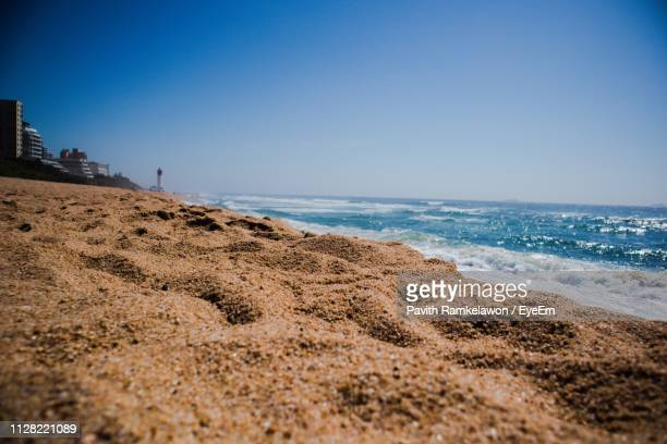 scenic view of beach against clear blue sky - reed dance stock pictures, royalty-free photos & images
