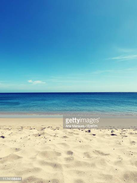 scenic view of beach against clear blue sky - praia imagens e fotografias de stock