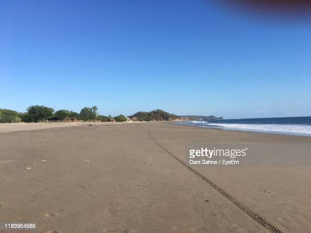 scenic view of beach against clear blue sky - sahne ストックフォトと画像