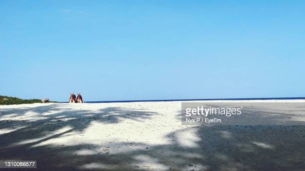 scenic view of beach against clear blue sky - kenya stock pictures, royalty-free photos & images