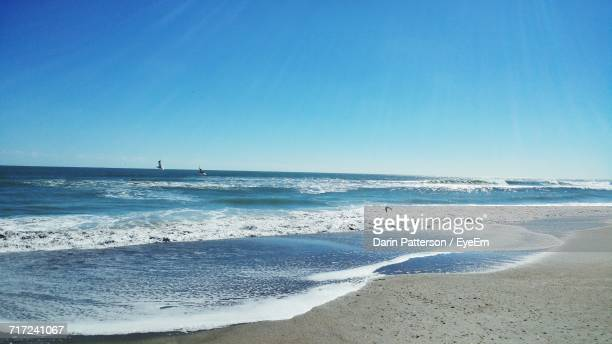 scenic view of beach against clear blue sky - cocoa beach stock pictures, royalty-free photos & images