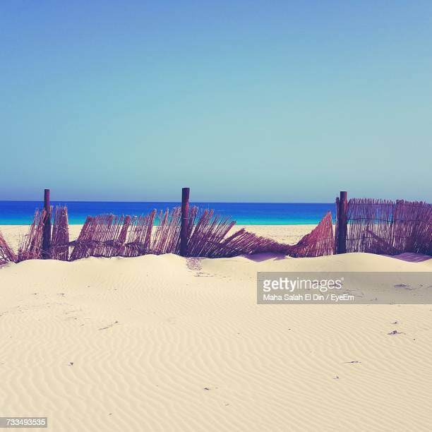 scenic view of beach against clear blue sky - salah stock photos and pictures