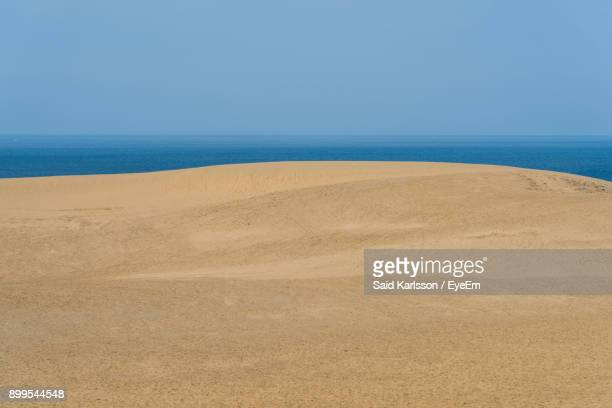 scenic view of beach against clear blue sky - tottori prefecture stock photos and pictures