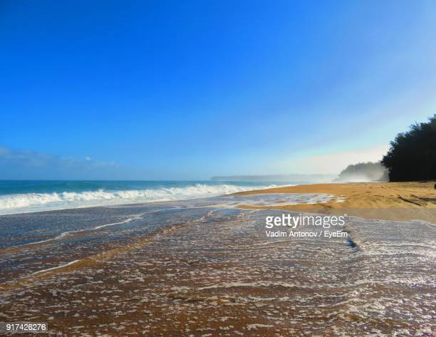 scenic view of beach against clear blue sky - antonov stock pictures, royalty-free photos & images