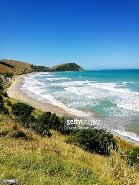 scenic view of beach against clear blue sky - gisborne stock photos and pictures