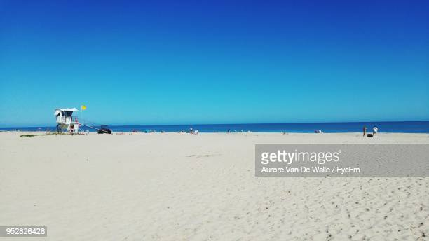 scenic view of beach against clear blue sky - ウェストパームビーチ ストックフォトと画像