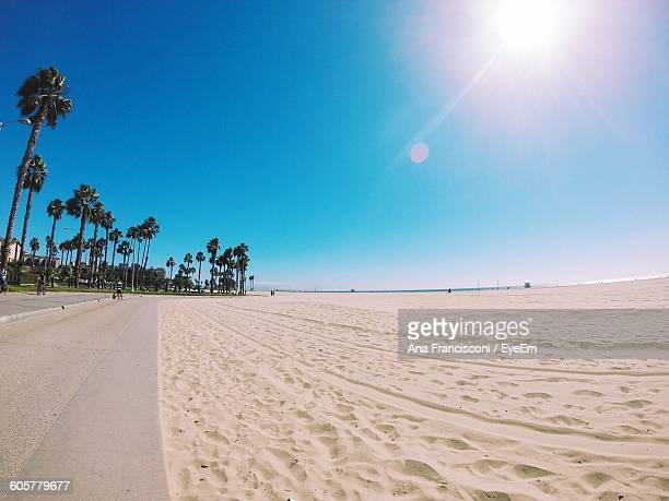 scenic view of beach against clear sky on sunny day - カリフォルニア ストックフォトと画像