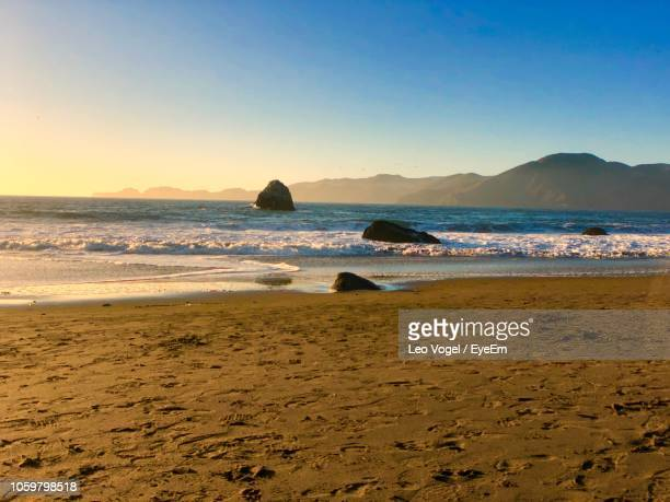 scenic view of beach against clear sky - vogel stock pictures, royalty-free photos & images