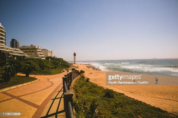 scenic view of beach against clear sky - reed dance stock pictures, royalty-free photos & images