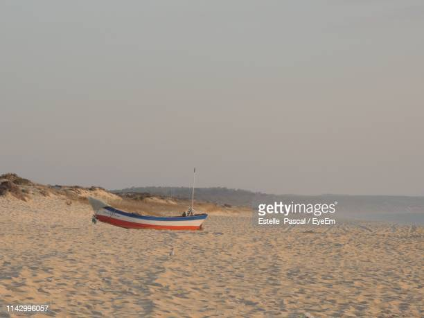scenic view of beach against clear sky - comporta portugal stock photos and pictures