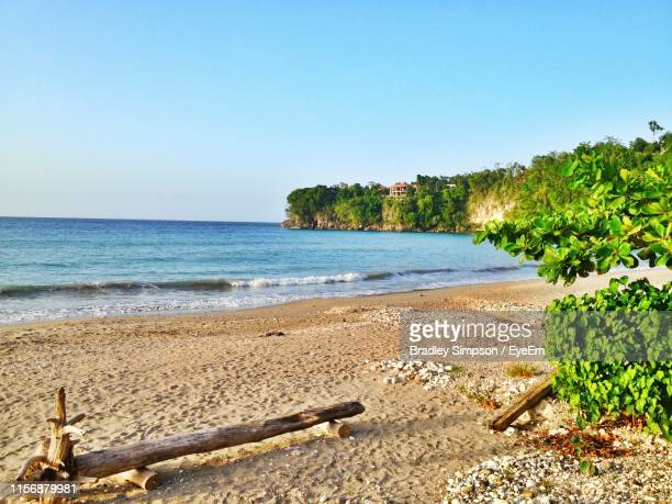 scenic view of beach against clear sky - kingston jamaica stock pictures, royalty-free photos & images