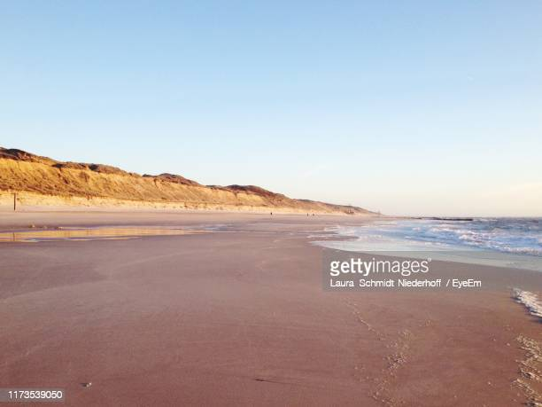 scenic view of beach against clear sky - laura schmidt foto e immagini stock