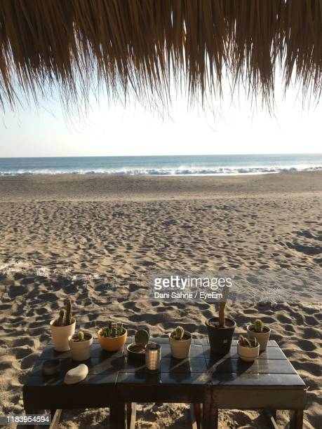 scenic view of beach against clear sky - sahne ストックフォトと画像
