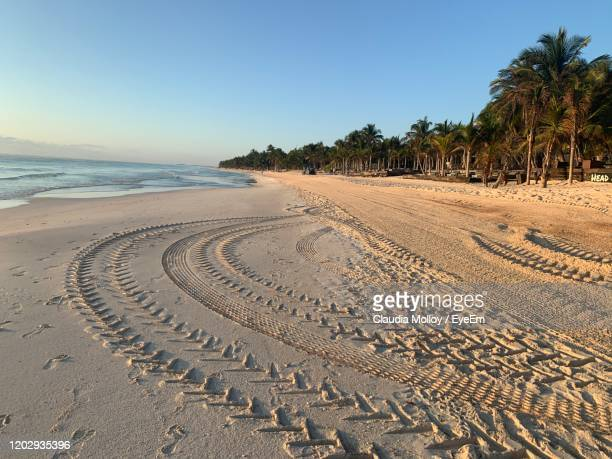 scenic view of beach against clear sky - sandy molloy stock pictures, royalty-free photos & images