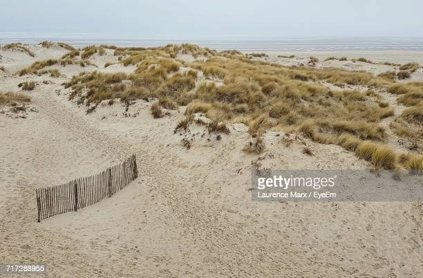 scenic view of beach against clear sky - le touquet paris plage stock pictures, royalty-free photos & images