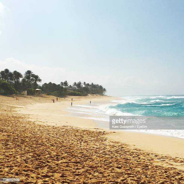scenic view of beach against clear sky - haleiwa - fotografias e filmes do acervo