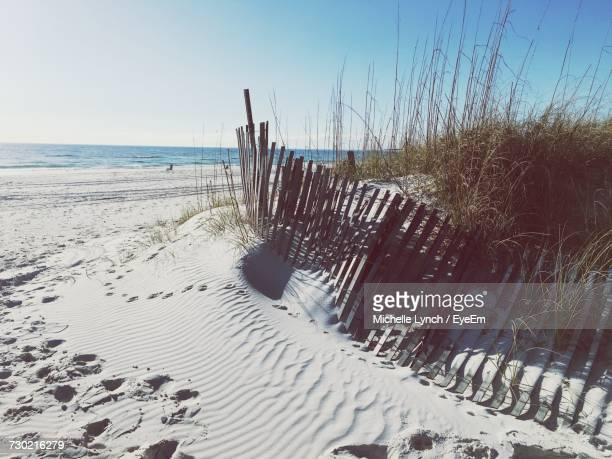 scenic view of beach against clear sky - gulf coast states stockfoto's en -beelden