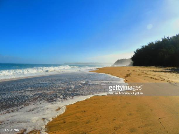 scenic view of beach against clear sky - antonov stock pictures, royalty-free photos & images