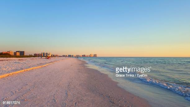 scenic view of beach against clear sky - marco island stock pictures, royalty-free photos & images