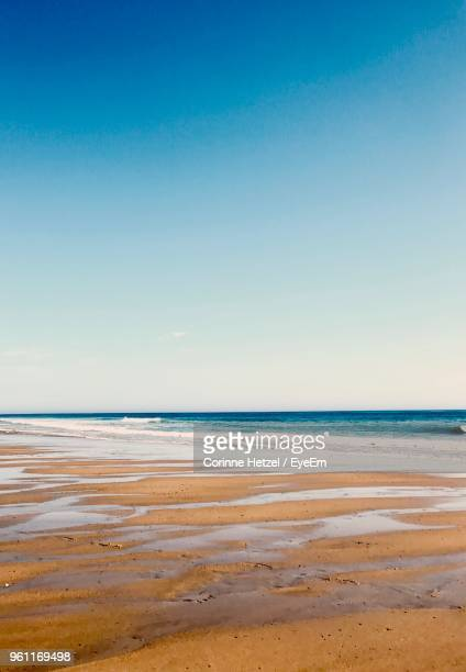 scenic view of beach against clear sky - corinne paradis ストックフォトと画像