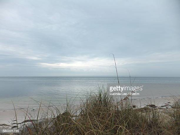 scenic view of beach against cloudy sky - lucinda lee stock photos and pictures