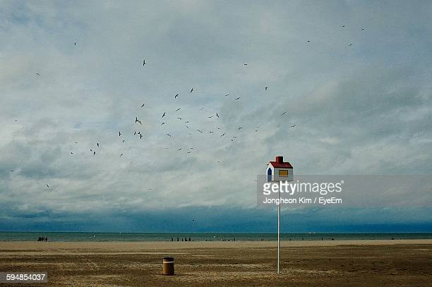 scenic view of beach against cloudy sky - birdhouse stock pictures, royalty-free photos & images