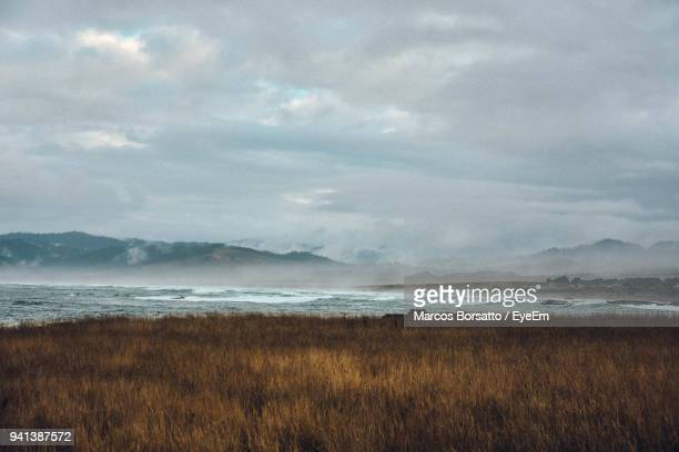 scenic view of beach against cloudy sky - fort bragg stock pictures, royalty-free photos & images