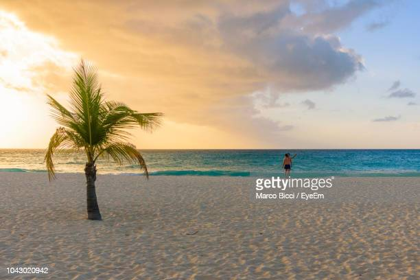 scenic view of beach against sky during sunset - oranjestad stockfoto's en -beelden