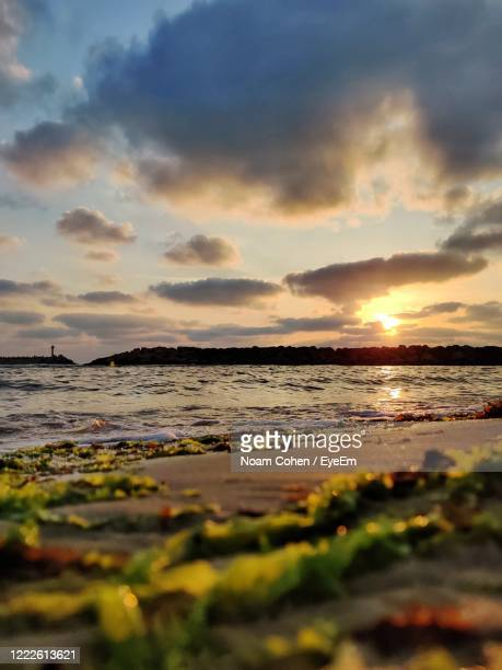 scenic view of beach against sky during sunset - noam cohen stock pictures, royalty-free photos & images