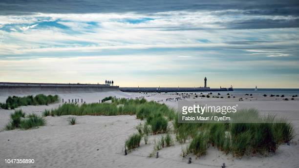 scenic view of beach against sky - nord frankrijk stockfoto's en -beelden