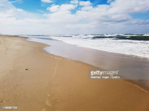 scenic view of beach against sky - vogel stock pictures, royalty-free photos & images