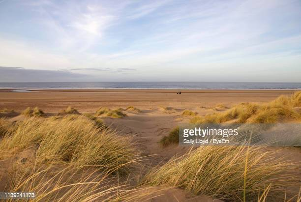 scenic view of beach against sky - norfolk east anglia foto e immagini stock