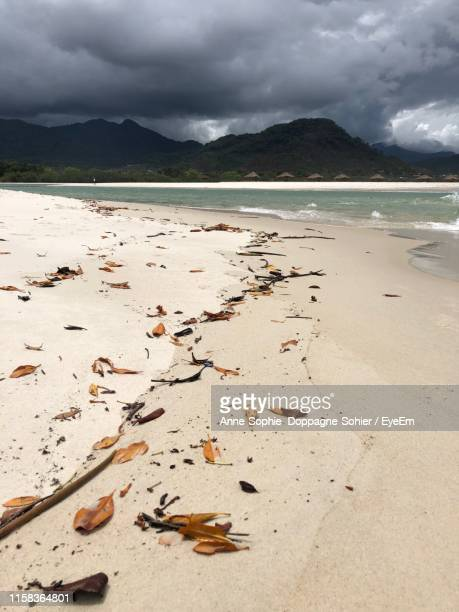 scenic view of beach against sky - sierra leone stock pictures, royalty-free photos & images