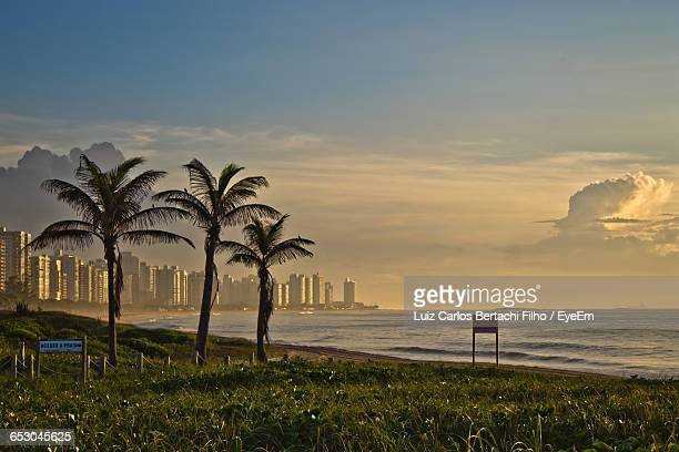 scenic view of beach against sky - filho stock pictures, royalty-free photos & images