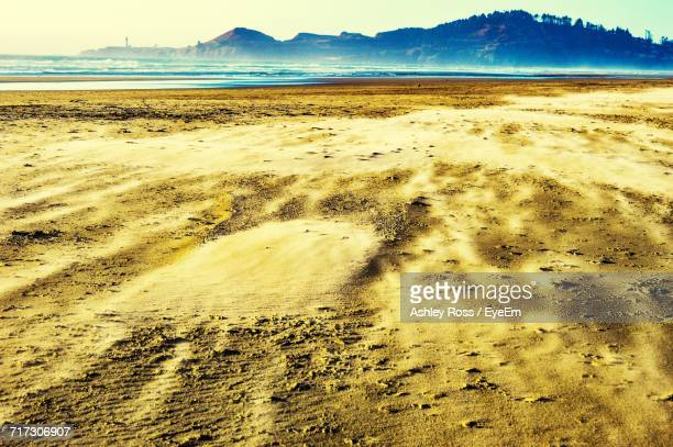 scenic view of beach against sky - ashley ross stock pictures, royalty-free photos & images