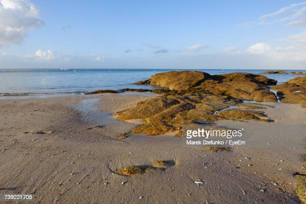 scenic view of beach against sky - marek stefunko stock photos and pictures