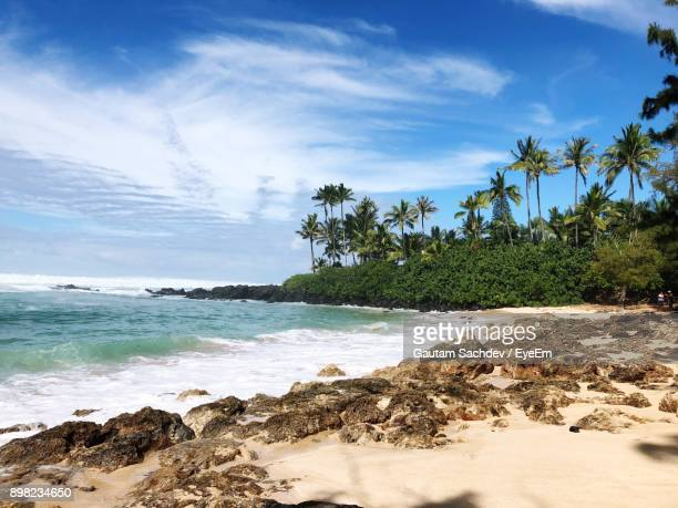 scenic view of beach against sky - haleiwa - fotografias e filmes do acervo