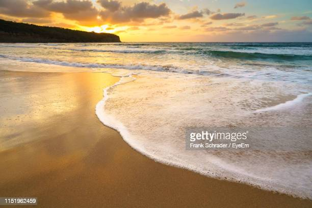scenic view of beach during sunset - frank schrader stock pictures, royalty-free photos & images