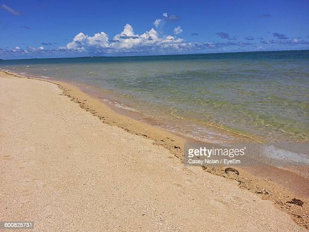 scenic view of beach - casey nolan stock pictures, royalty-free photos & images