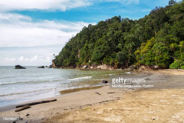 scenic view of beach - monika gregussova stock pictures, royalty-free photos & images
