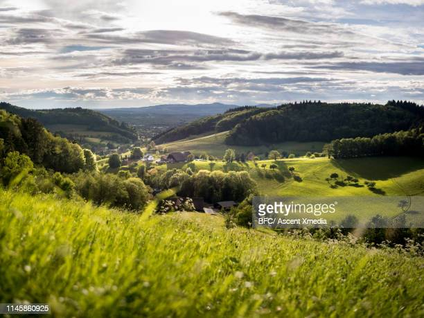 scenic view of beautiful countryside - focus op achtergrond stockfoto's en -beelden