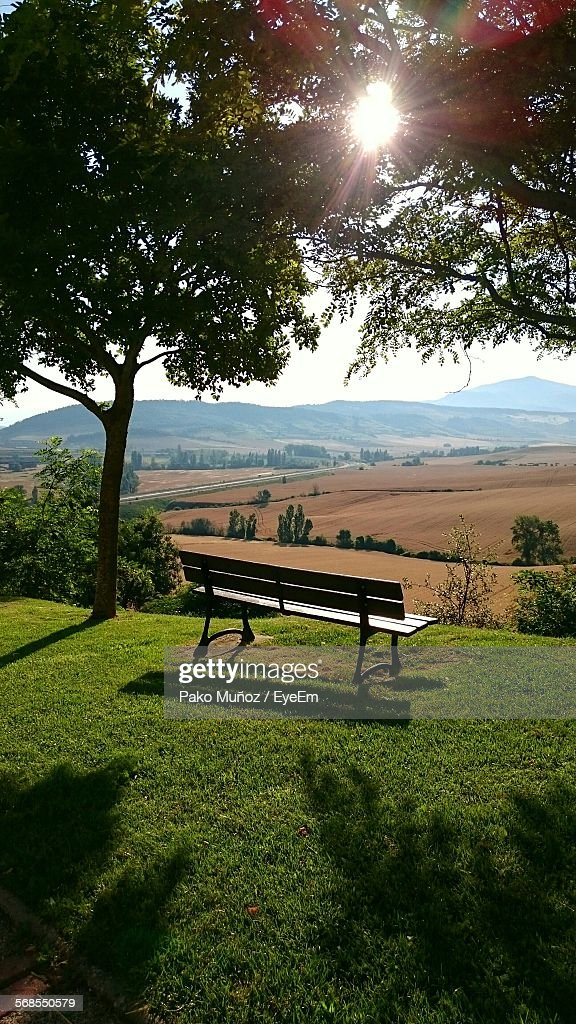 Scenic View Of Bench On Grassy Field By Trees Against Sky : Stock Photo