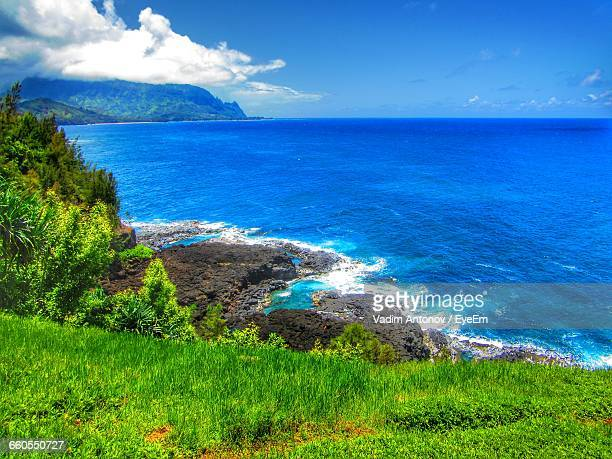 scenic view of blue sea in front of grassy field against sky on sunny day - antonov stock pictures, royalty-free photos & images