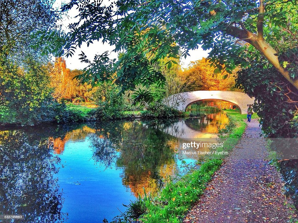 Scenic View Of Bridge In Park : Foto stock