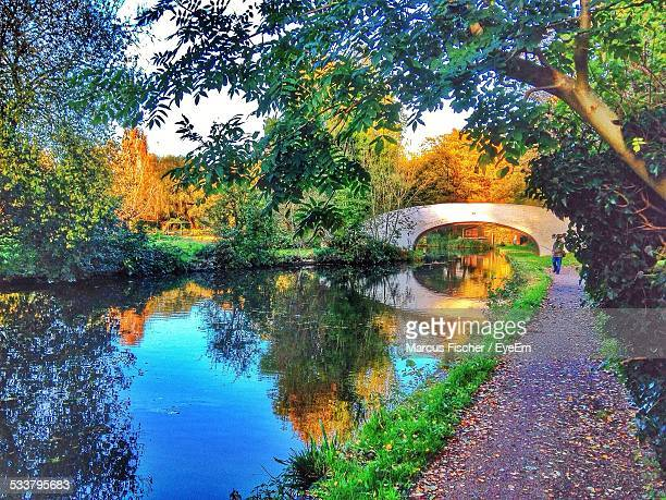scenic view of bridge in park - bedfordshire stock photos and pictures