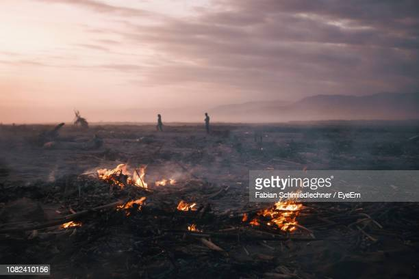 scenic view of burning wood over land - deforestation stock pictures, royalty-free photos & images