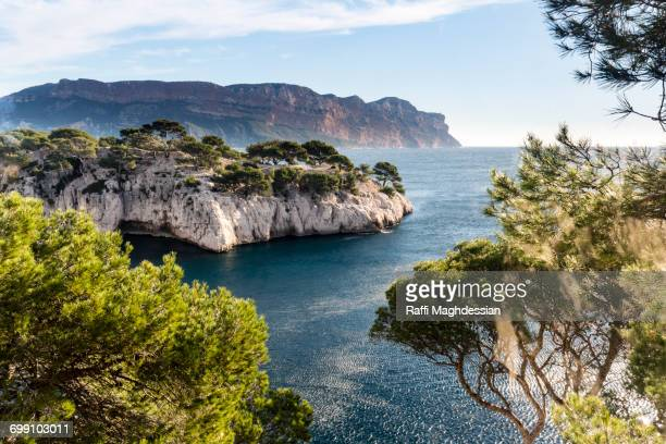 scenic view of calanque and the mediterranean sea framed by pine trees - marseille photos et images de collection