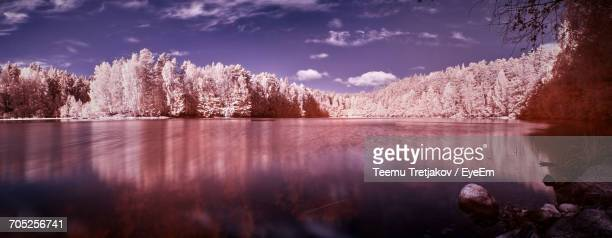 scenic view of calm lake against sky - teemu tretjakov stock pictures, royalty-free photos & images