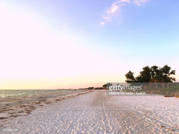 60 Top Bradenton Beach Pictures, Photos and Images - Getty Images