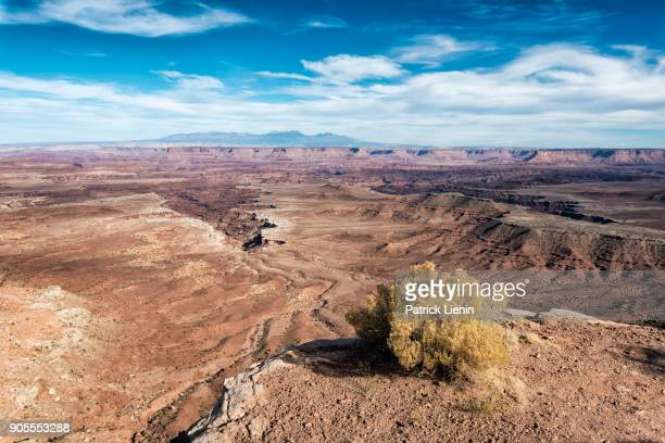 scenic view of canyonlands in moab, utah, united states - mesa stock-fotos und bilder